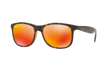 Ray-Ban RB4202 – ANDY | Lunettes de soleil homme